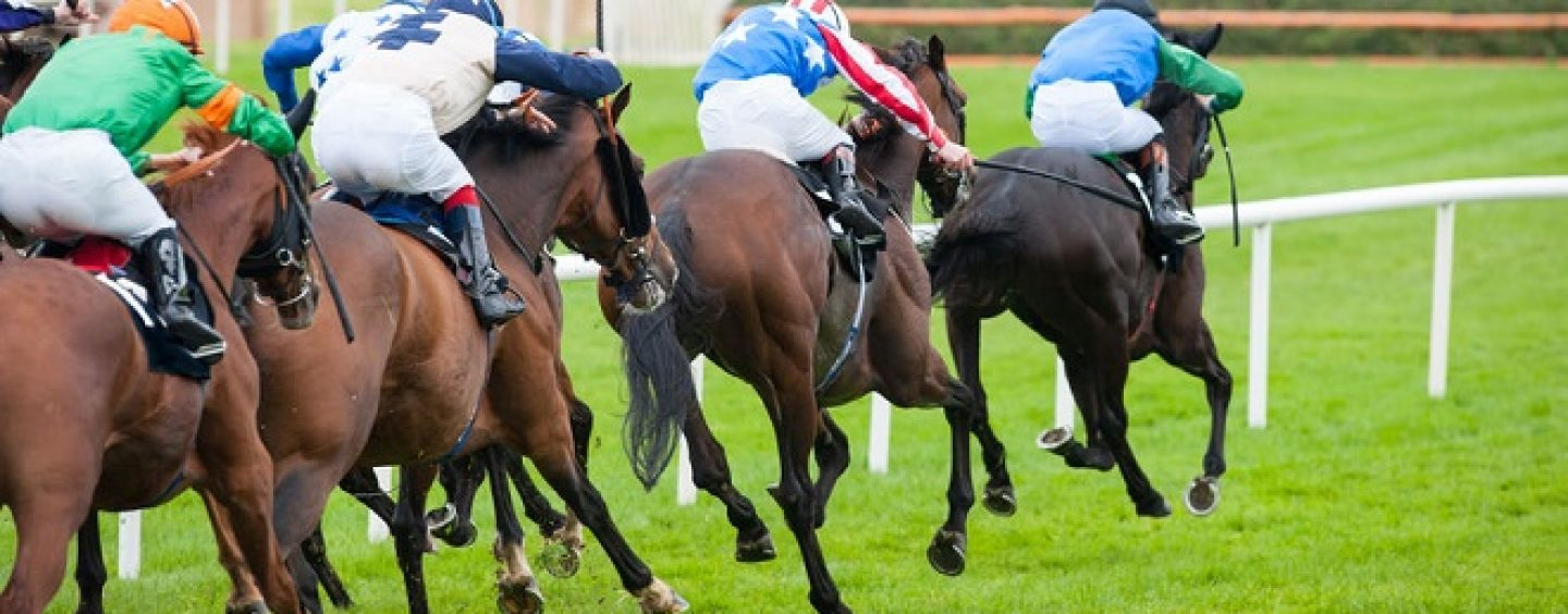 AppBet horse racing tipster picks her Wincanton winners