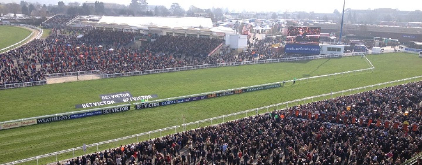 Easyodds releases new version of Cheltenham app