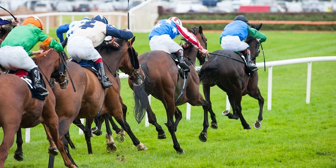 sea the sun leads betbright u2019s quest for tipster challenge