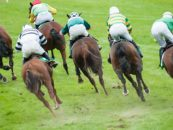 bha announces full review anti doping rules