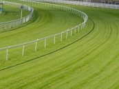 britbet at centre of racecourse pool betting operations
