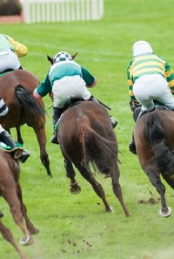 punters increasingly favouring online grand national wagers