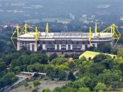 bvb partners with sportradar for innovative digital launch