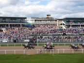 newcastle racecourse to receive multi million pound face lift