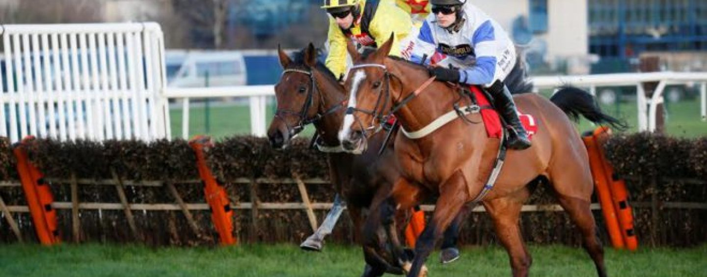horseracing prize money facing cuts as levy drops 17m