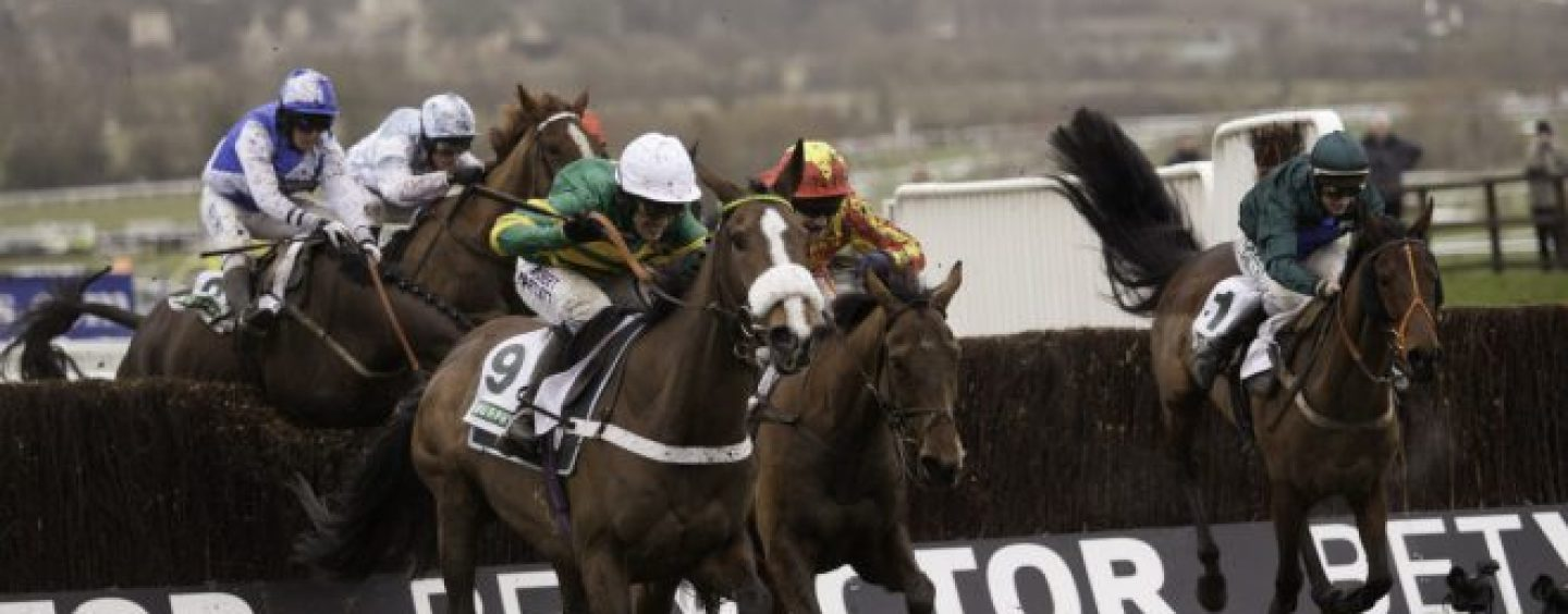 betvictor extends cheltenham gold cup sponsorship