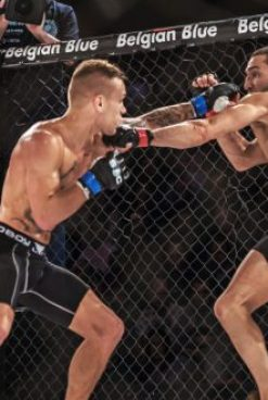 img arena delivers live betting opportunities with ufc event centre
