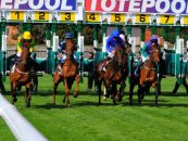 eamonn wilmott departs uk tote group