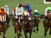countdown to cheltenham geoff banks labels wednesday wipeout as a figment of the imagination