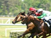 tote offers swedish racing with atg deal