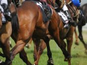 south africa targets 1 may to resume racing