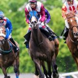 hblb funds additional fixtures as racing returns