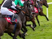bookmakers support racing with additional streaming and data fees